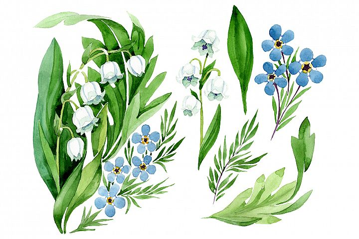 lily of the valley and forget-me-nots Watercolor png
