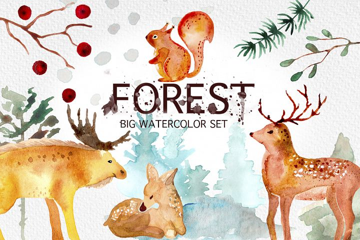 Winter Forest Watercolor Graphic Set