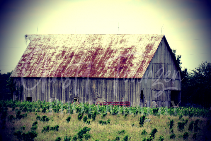 Old Rustic Barn Stock Photograph