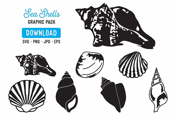 Sea Shells Vector SVG Bundle - Shell Graphic Bundle