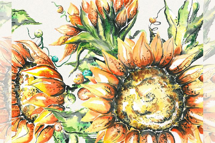 Sunflower clipart, sunflower watercolor clipart, floral
