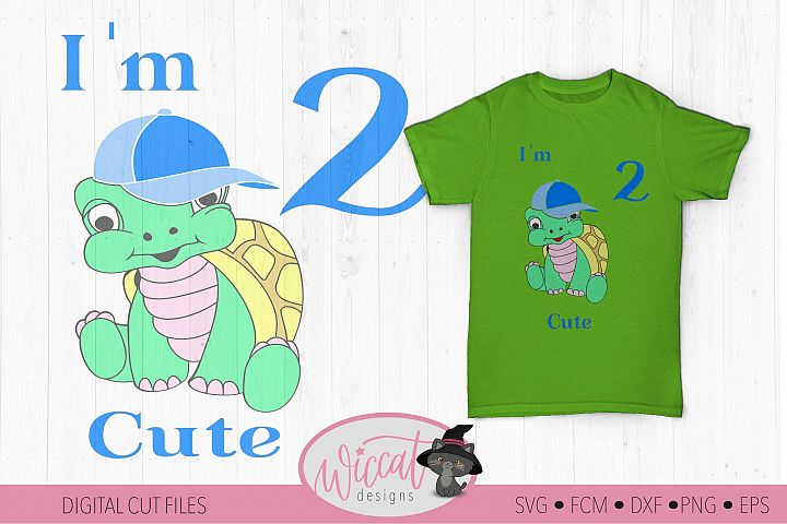 Birthday boy Turtle svg, Im 2 cute, Toddler Second birthday