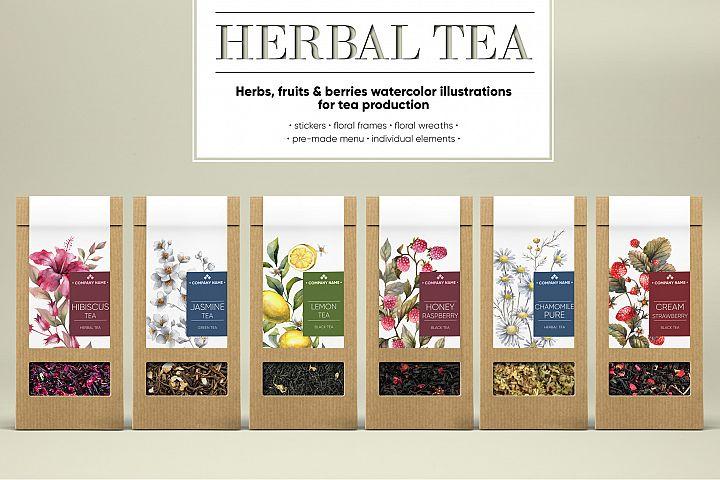 HERBAL TEA. Watercolor illustrations