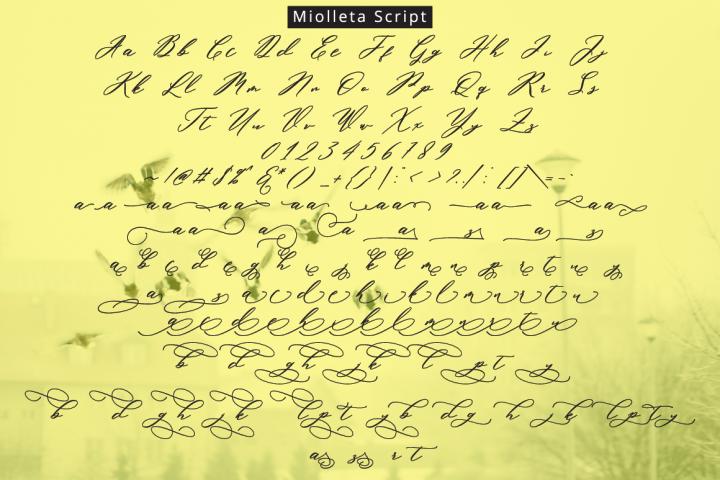 Miolleta Script example image 8