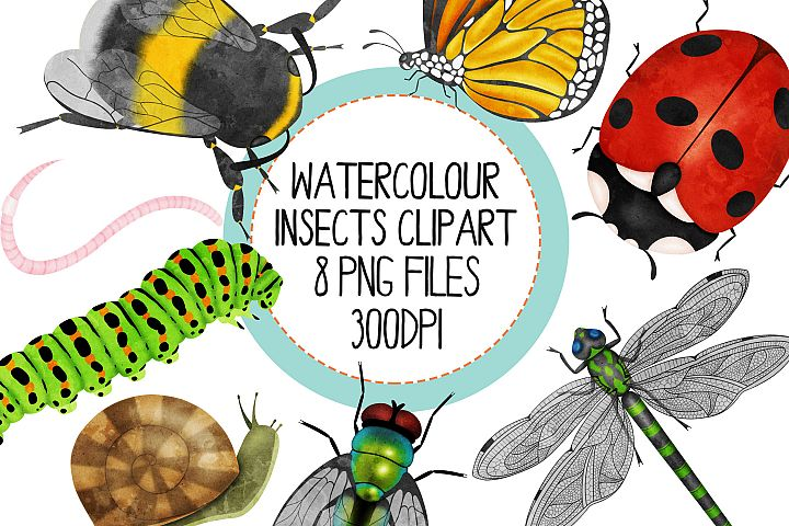 Watercolor Insect Clip Art Set
