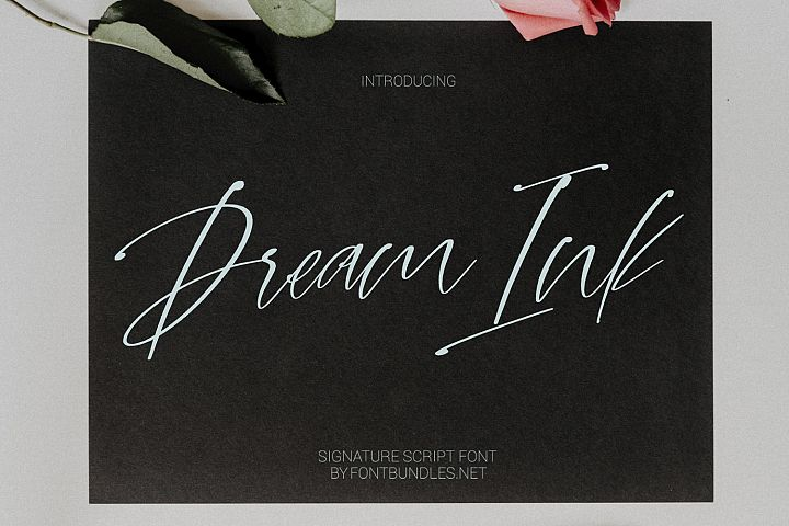 Dream Ink. Textured Script Font