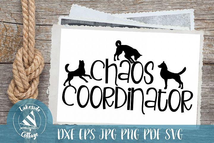 Dog Chaos Coordinator - Dog Lover SVG Design