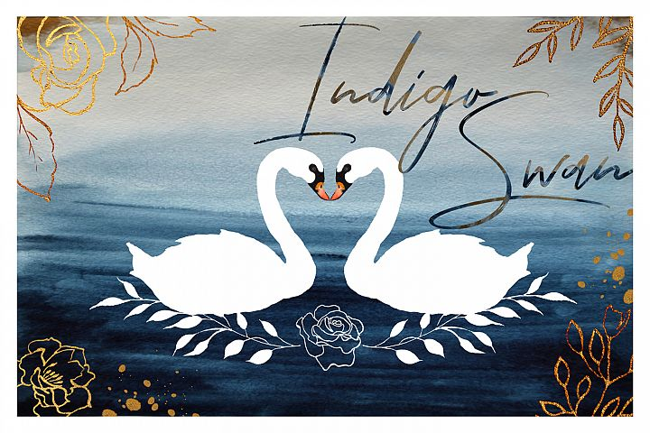 Indigo Swan. Watercolor collection