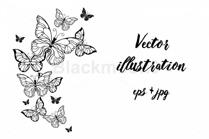 Flying Contour Butterflies