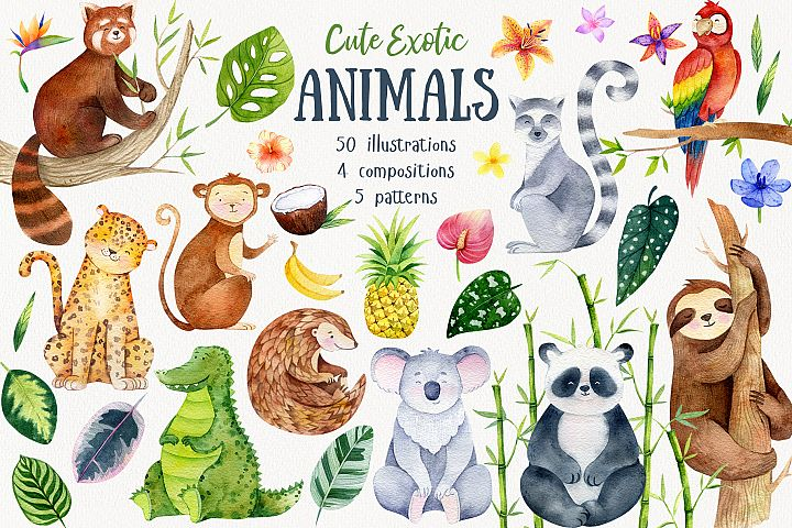 Cute Exotic Jungle Animals. Jungle patterns. Vol.2