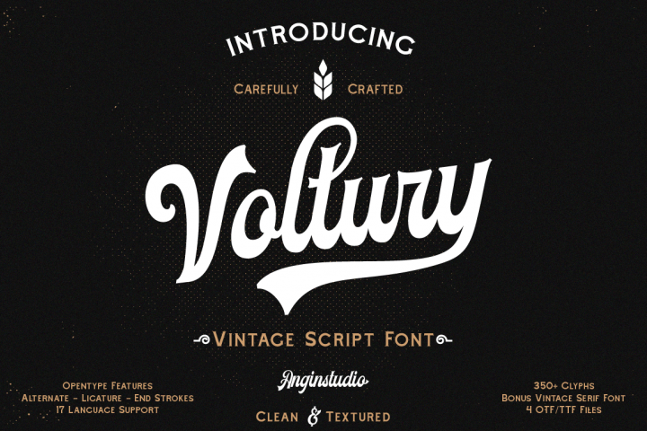 Voltury 4 fonts with extras