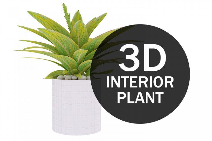 3D Interior Plant