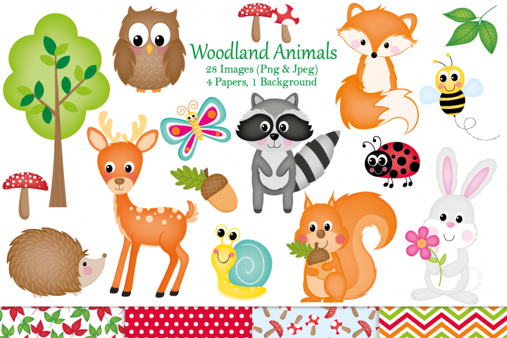 Woodland clipart, Woodland animal graphics & Illustrations
