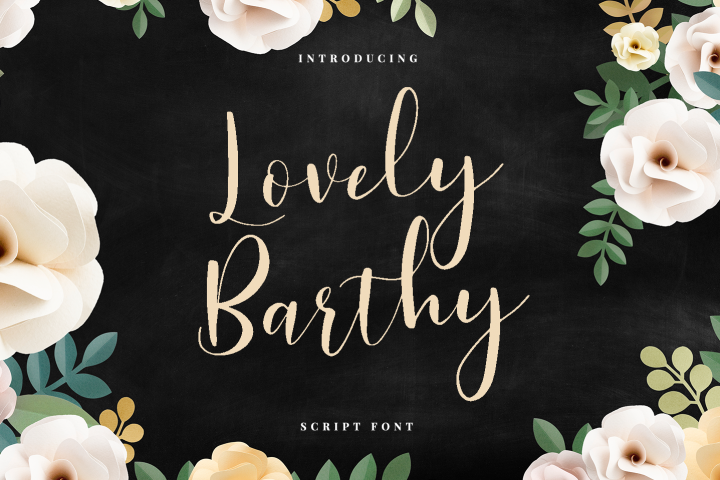 LovelyBarthy example