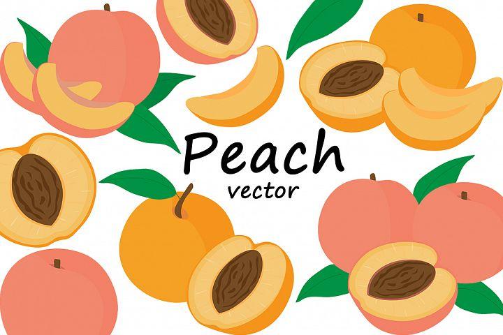 Set fruit peaches vector illustration