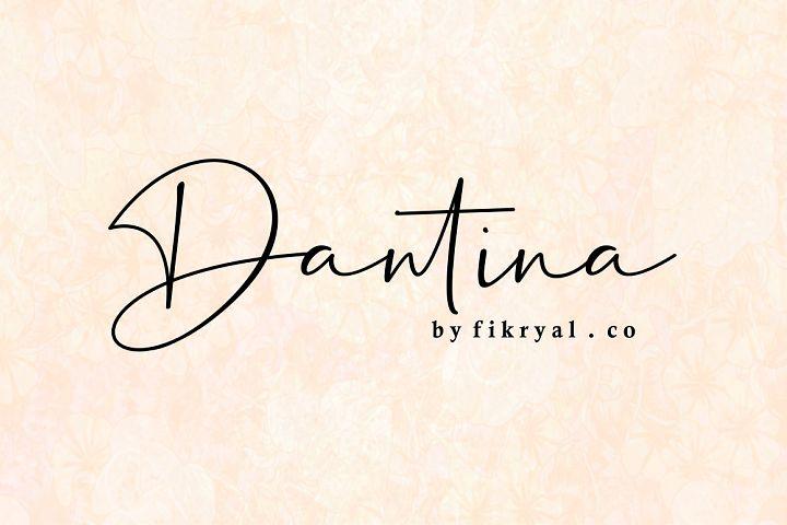 Dantina//handwritten font