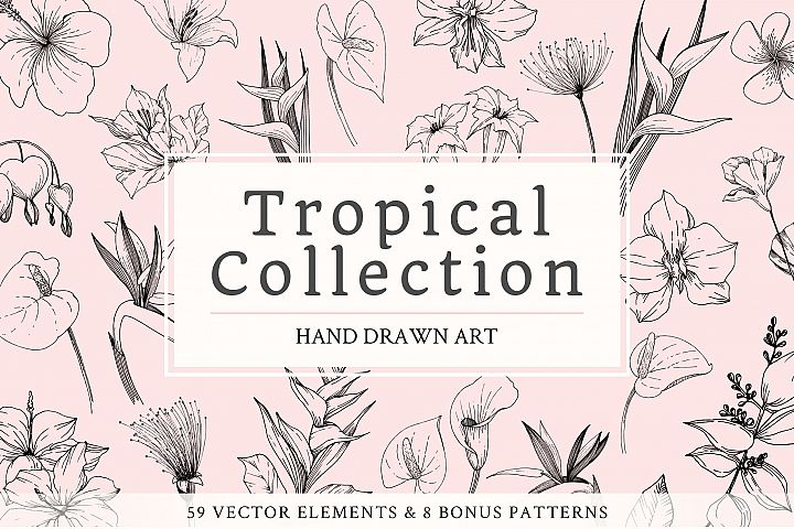 Vector - Tropical leaves and flowers