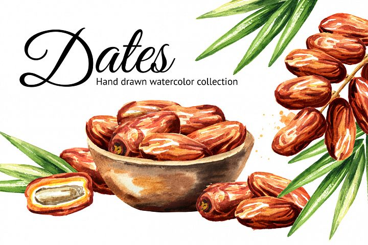 Dates. Watercolor collection