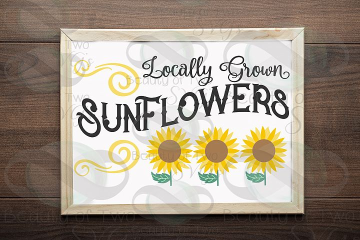 Sunflower svg and png, Summer Sunflower svg, vintage svg