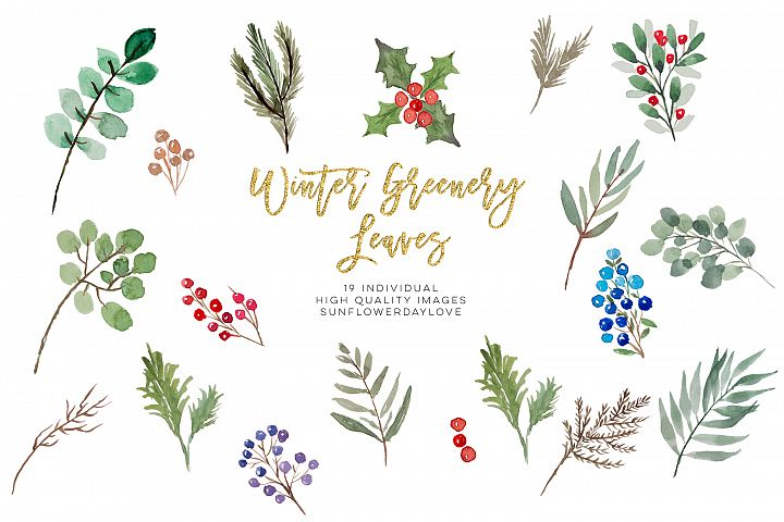 winter greenery leaves clipart, Christmas Leaves