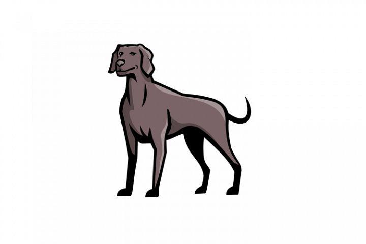 Weimaraner Dog Breed Mascot
