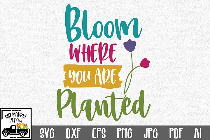 Bloom Where You Are Planted SVG Cut File - Spring SVG DXF