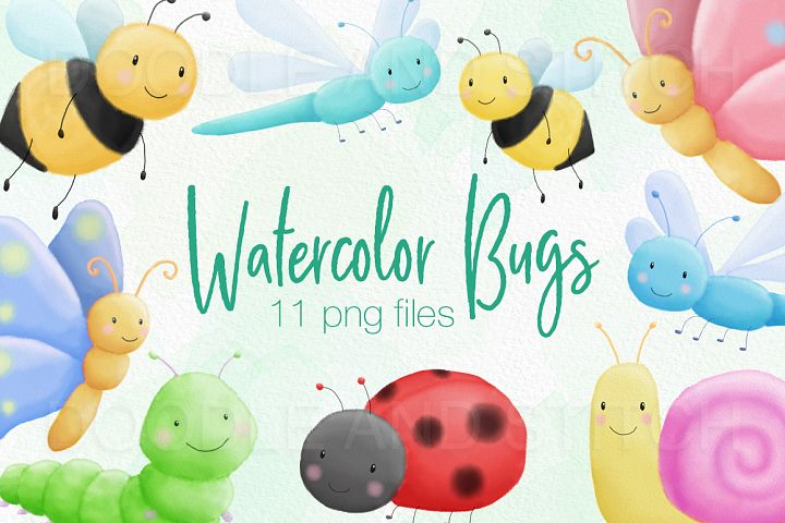 Cute Bugs Watercolor Illustrations