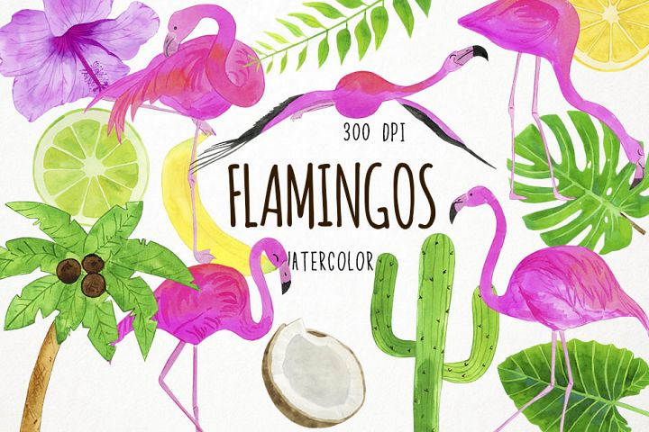 Watercolor Flamingo Clipart, Flamingo Clip Art, Flamingo PNG