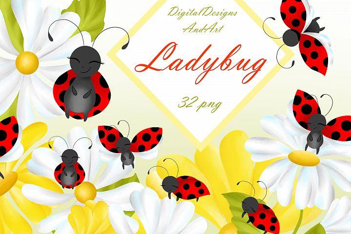 Ladybug clipart
