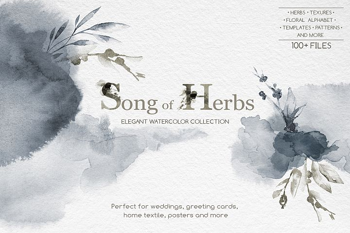 Song of Herbs. Watercolor collection