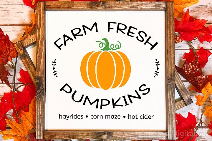 Farm Fresh Pumpkins Svg, Pumpkin Patch Sign Svg, Farmhouse