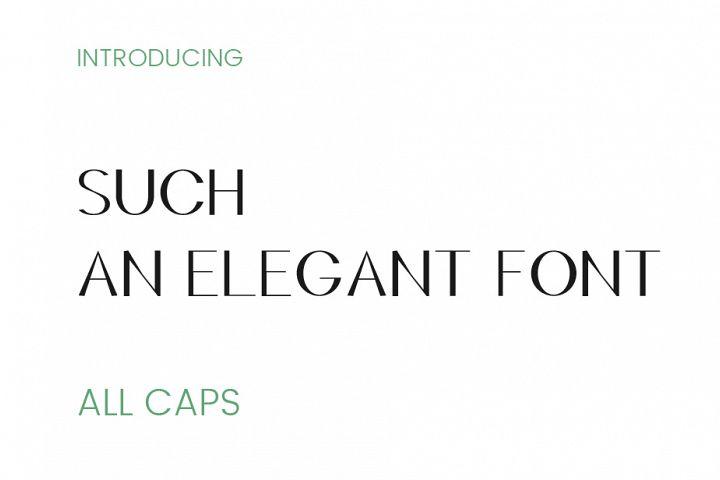 Such an Elegant Font