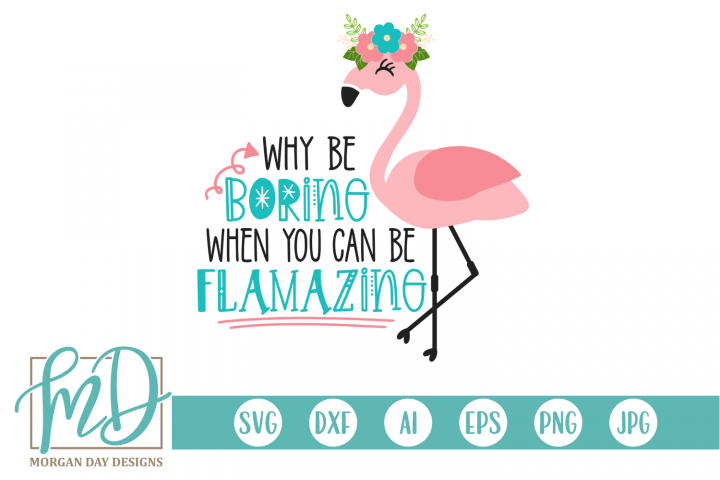 Why Be Boring When You Can Be Flamazing - Flamingo SVG