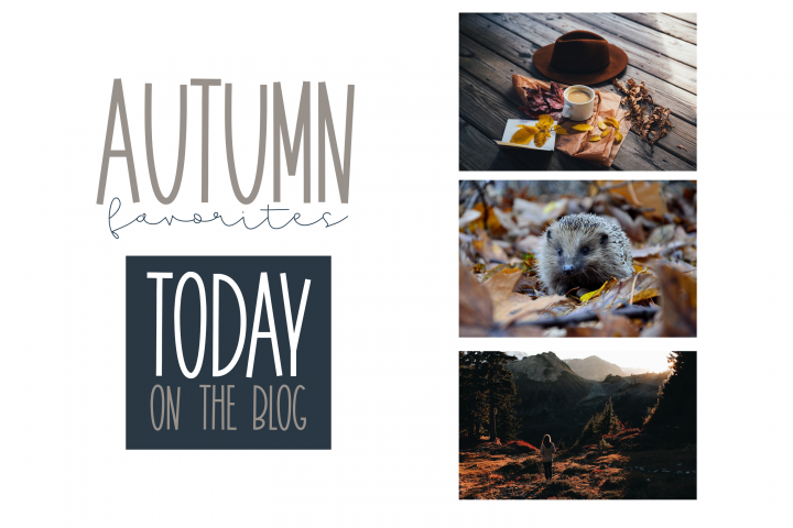 November - A Tall Handwritten Font - Free Font of The Week Design0