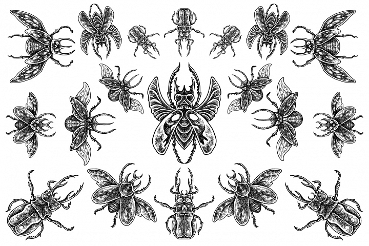 Beetle horn - Tattoo style