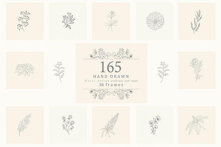 165 Hand Drawn Floral Elements, Frames.