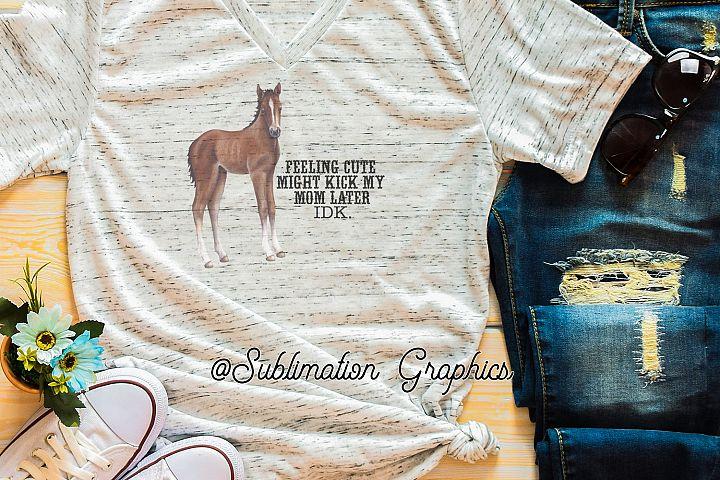 Feeling Cute Foal Sublimation Digital Download