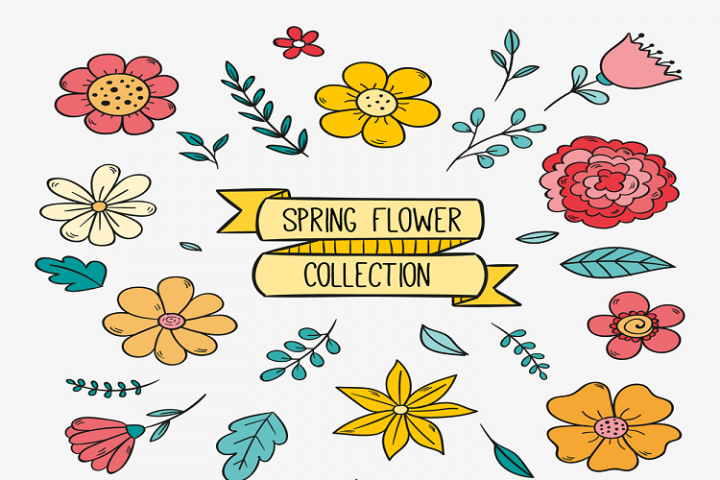 Painted flower design vector