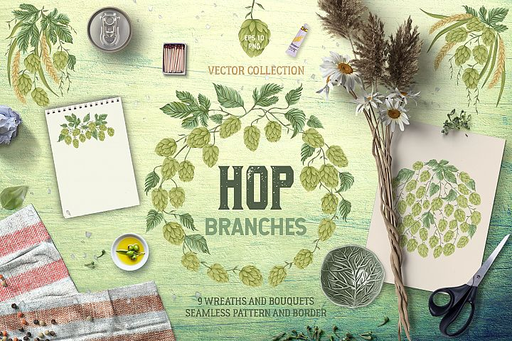Hop branches. Vector collection
