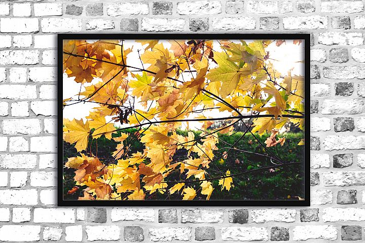 Nature photo, floral print, autumn print, floral