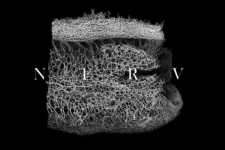 30 NERV Textures