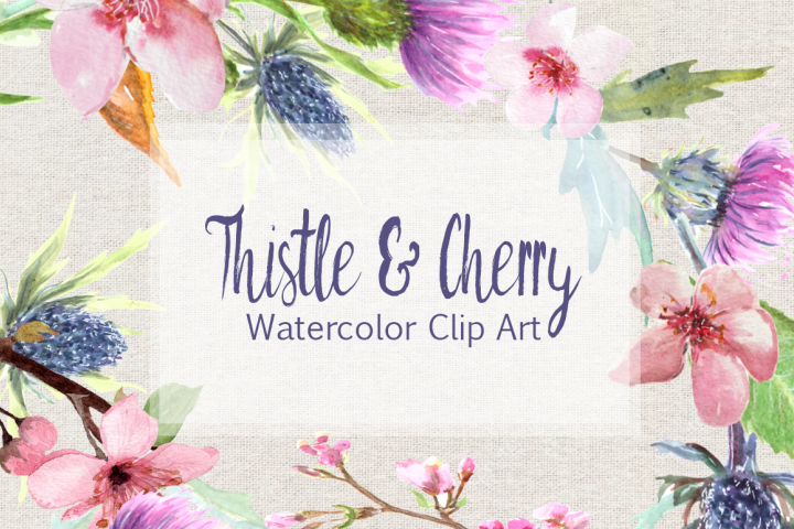 Watercolor Thistle and Cherry Clip Art Set