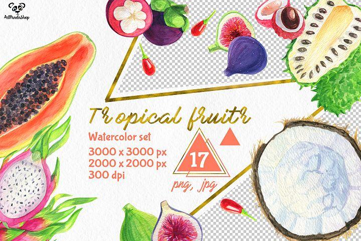 Tropical fruits watercolor set #1