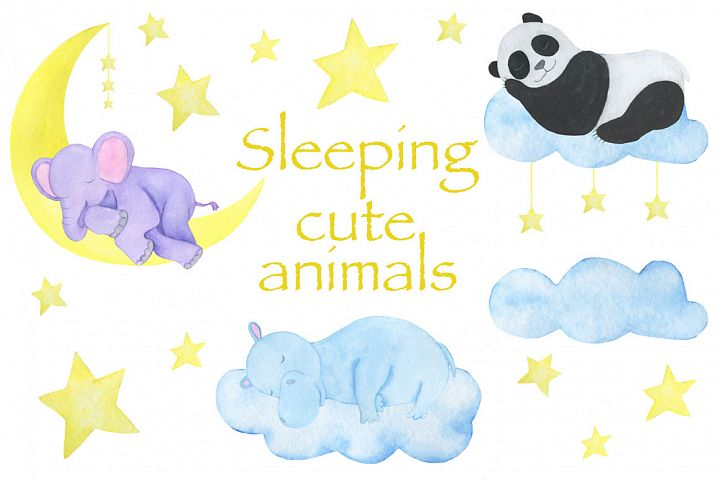 Sleeping cute animals