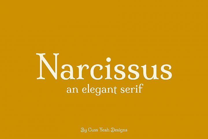 Narcissus // An Elegant Serif