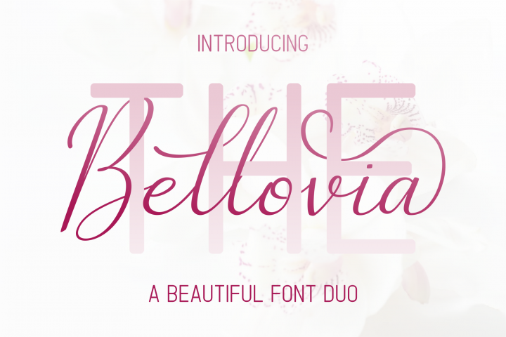 The Bellovia Font Duo