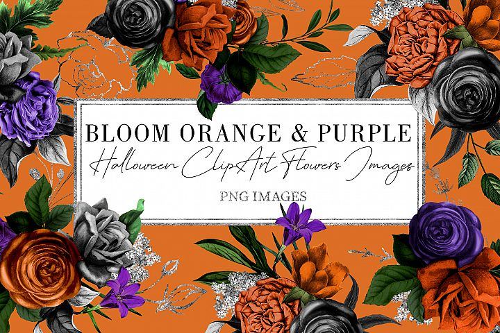 Orange & Purple Flower | Halloween Blossom