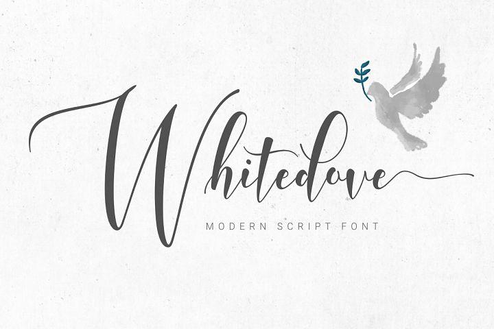 Whitedove Modern Script