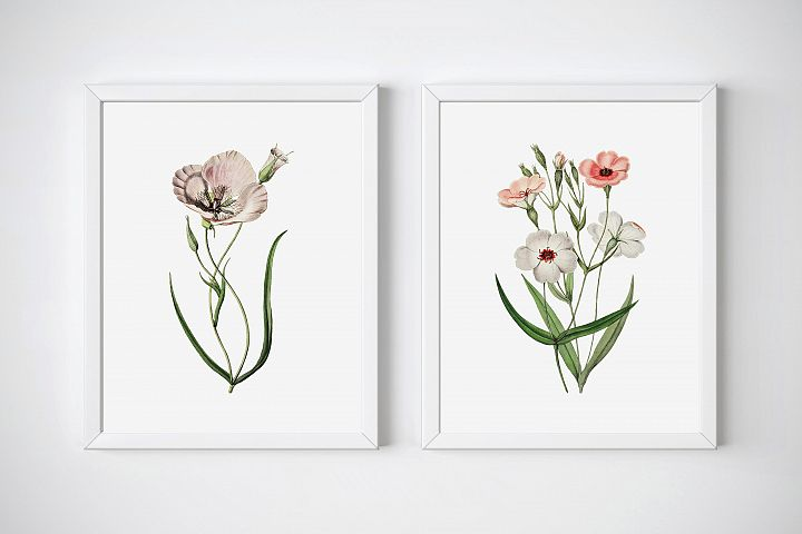 Floral Prints Wall Art, Printable Art Botanical, Flower Art