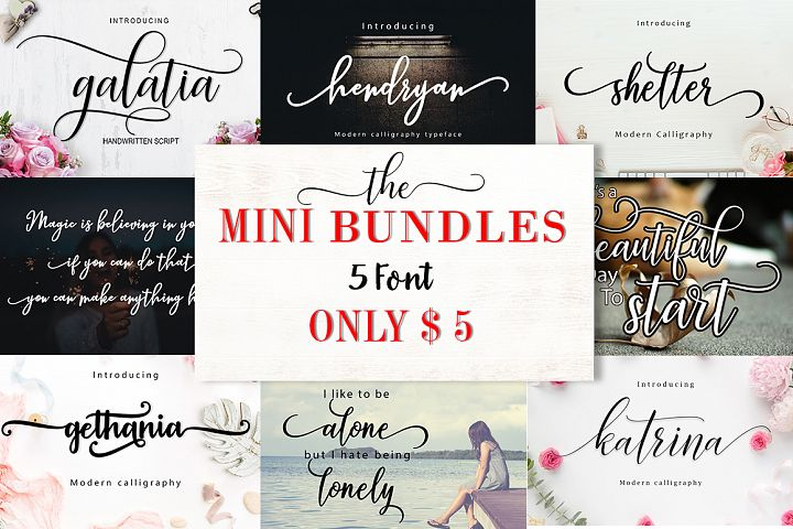 Mini Bundles 5 font only $5